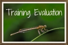 Thumbnail image for Example Training Evaluation Form